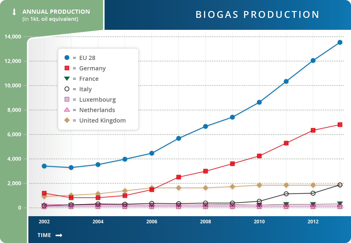 Biogas Large Plant Bio Gas Diagram Production